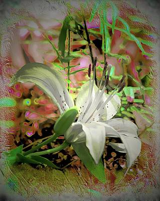 Photograph - Angel Lily by Sheri McLeroy
