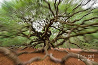 Photograph - Angel Oak Tree In Motion by Dale Powell