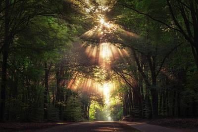Photograph - Angel Of Light #2 by Edwin Mooijaart