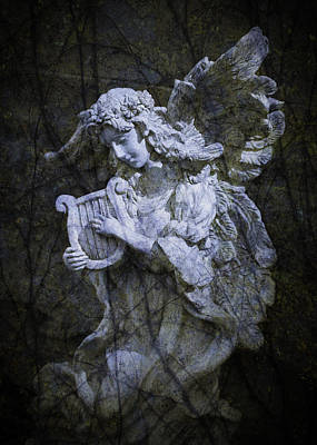Photograph - Angel Of The Morning by Gary Shepard