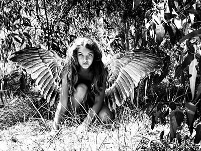 Photograph - Angel Of The Wild by Diana Haronis