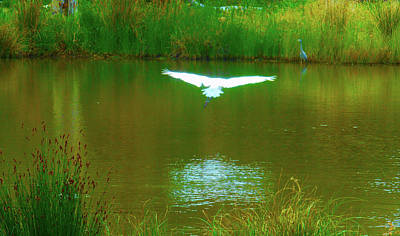 Photograph - Angel Over The Water by Mark Blauhoefer