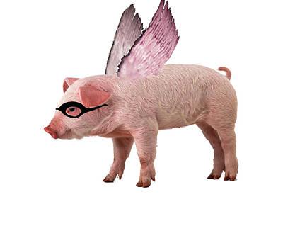 Angel Pig Original by Miguel Martins