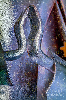 Photograph - Angel Prayers by Jean OKeeffe Macro Abundance Art