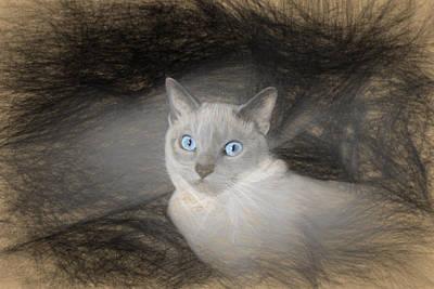 Angel Sketch With Blue Eyes Original by Linda Phelps