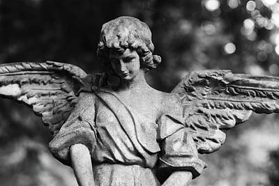 Photograph - Angel  by Sue McGlothlin