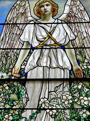 Photograph - Angel Winged Lovely by Ed Weidman