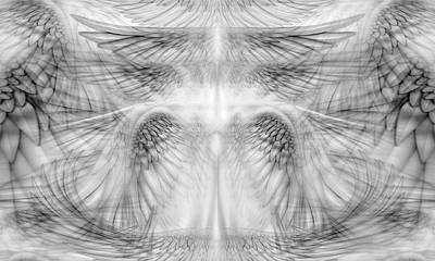 Digital Art - Angel Wings Pattern by James Larkin