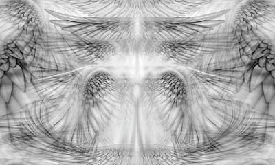 Digital Art - Angel Wings Pattern by James Larkin