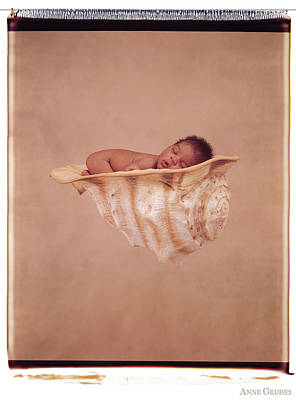 Wall Art - Photograph - Angela In A Shell by Anne Geddes