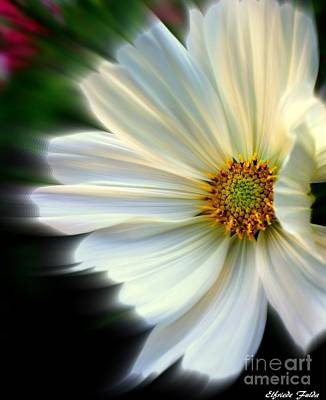 Photograph - Angelic by Elfriede Fulda