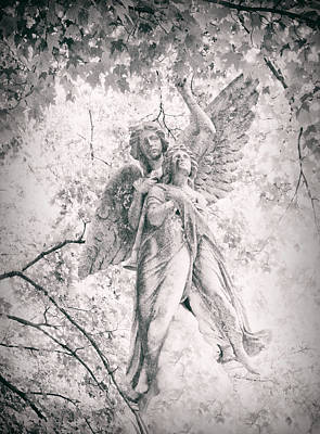 Woodlawn Photograph - Angelic  by Jessica Jenney