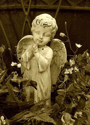 Photograph - Angelic Sepia Tone by Carolyn Jacob