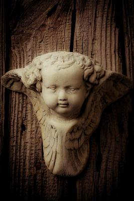 Photograph - Angels Face by Garry Gay