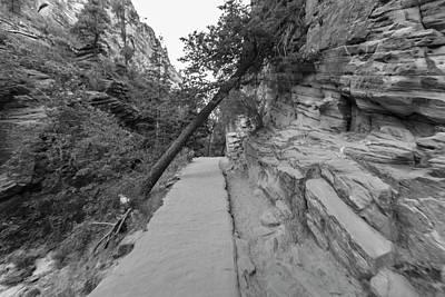 Photograph - Angels Landing Trail 1 by John McGraw