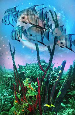 Photograph - Angels Under The Sea by Debra and Dave Vanderlaan