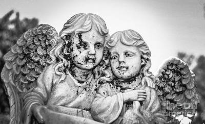 Photograph - Angels With Dirty Faces by Catherine Hill
