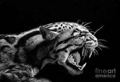 Wild Animals Drawing - Anger by Miro Gradinscak