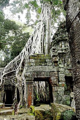 Angkor - Ta Prohm 4 Art Print by Linda Parker
