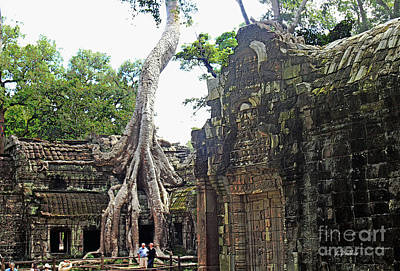 Angkor - Ta Prohm 5 Art Print by Linda Parker