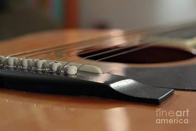 Photograph - Angled view of guitar pins and strings closeup by Doug Moore