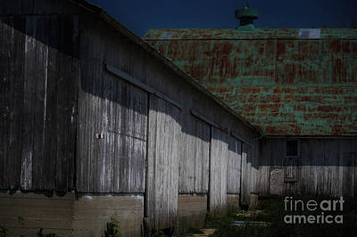 Equestrian Apparel Photograph - Angles At The Farm by Laura Birr Brown