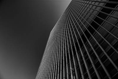 Canary Photograph - Angles by Martin Newman