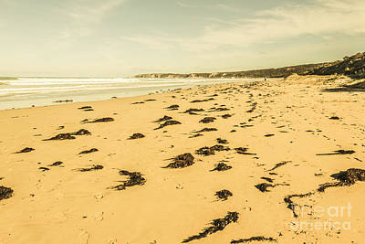 Photograph - Anglesea Landscape by Jorgo Photography - Wall Art Gallery