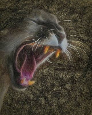 Digital Art - Angry Cougar 2 by Ernie Echols