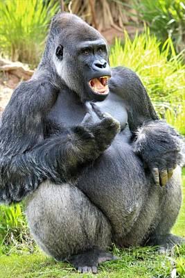 Angry Gorilla Art Print by Paulette Thomas