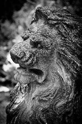 Photograph - Angry Lion Sclupture by Roger Mullenhour