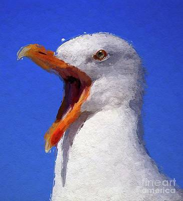 Royalty-Free and Rights-Managed Images - Angry Seagull by Esoterica Art Agency