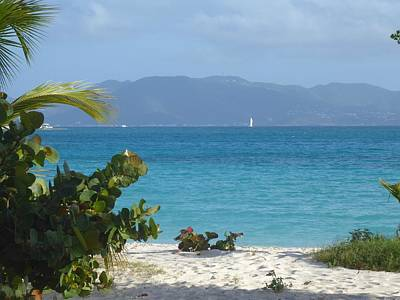Photograph - Anguilla Beach Scene by Margaret Brooks