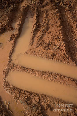Photograph - Angular Mud Track by Jason Rosette