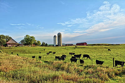 Photograph - Angus Pastures by Bonfire Photography