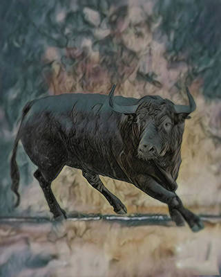 Angus Art Print by Wishes and Whims Originals By Michelle Jensen