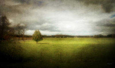 Angustown Pasture Art Print by Cynthia Lassiter
