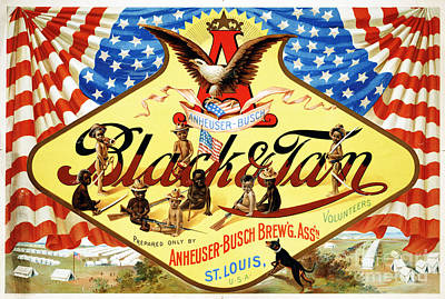Beer Drawings - Anheuser Busch Black and Tan Poster by Vintage Treasure