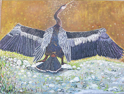 Anhinga Painting - Anhinga Drying Her Wings by Alicia Otis