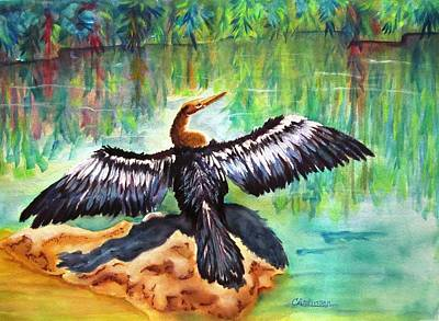 Anhinga In Paradise Original