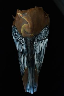 Painting - Anhinga  by Nancy Lauby