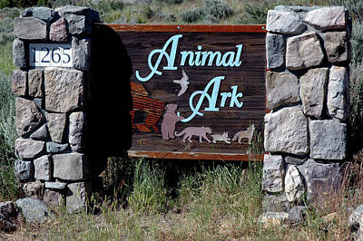 Cat Photograph - Animal Ark Sign Reno Nevada by LeeAnn McLaneGoetz McLaneGoetzStudioLLCcom