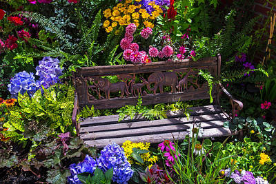 Garden Flowers Photograph - Animal Bench by Garry Gay