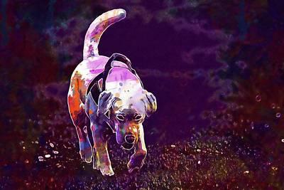 Labrador Digital Art - Animal Dog Labrador White Walk  by PixBreak Art
