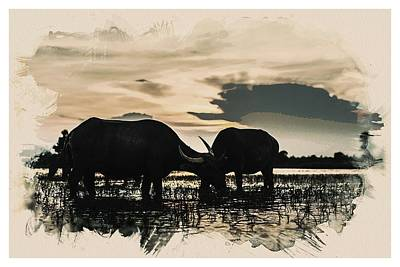 Animal Kingdom Series - Buffalo Art Print