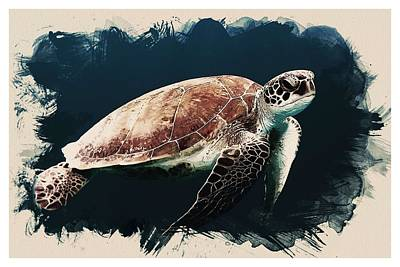Animal Kingdom Series - Caretta Caretta Sea Turtle Art Print