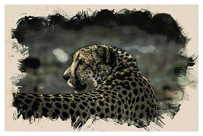 Animal Kingdom Series - Cheetah Art Print