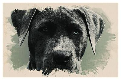 Kid Painting - Animal Kingdom Series -dog by Celestial Images