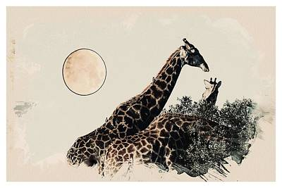 Animal Kingdom Series - Giraffe 1 Art Print