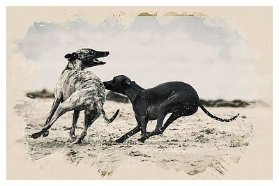 Animal Kingdom Series - Hunting Dogs Art Print